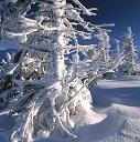 Winterurlaub im Riesengebirge in Polen mit der Familie im Ferienhaus mit Kamin und Polen-Ferienhaus.de